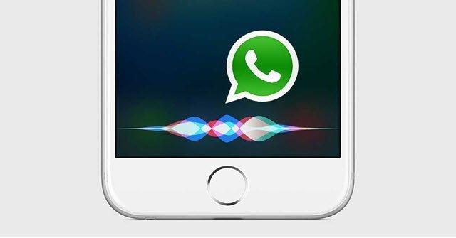 Apple Bug Ios 11 Siri Whatsapp