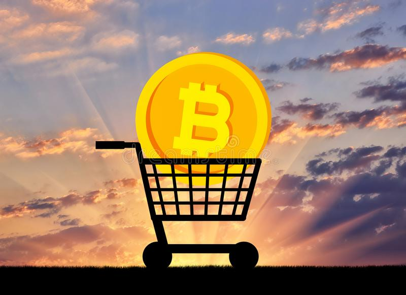 Bitcoin Coin Lies Grocery Cart Concept Buying Selling Crypto Currency 108664589