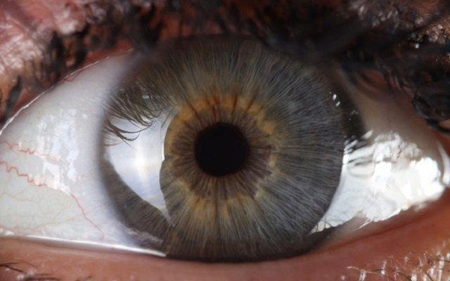 Ojo humano abierto en el que se visualiza la córnea.