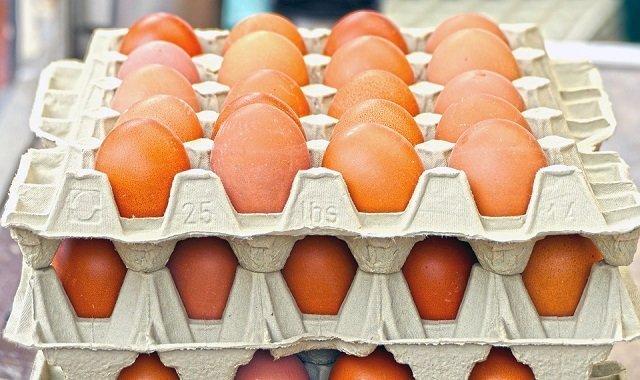 Huevos envasados en recipientes de cartón.