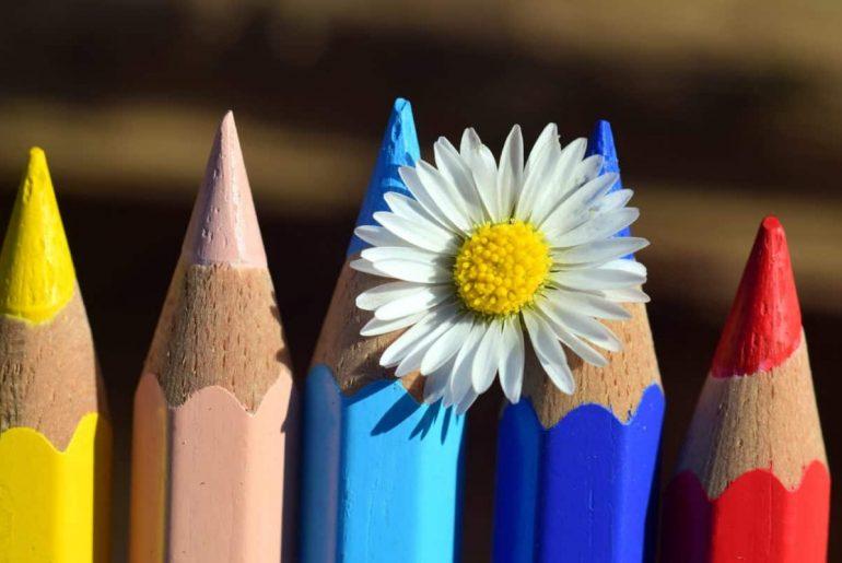 Colores y una flore representando la creatividad.