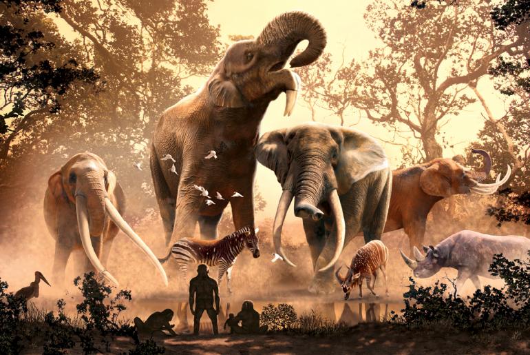 Tipos de elefantes antiguos cuyas crías dejaron huellas que nos revelan su historia.