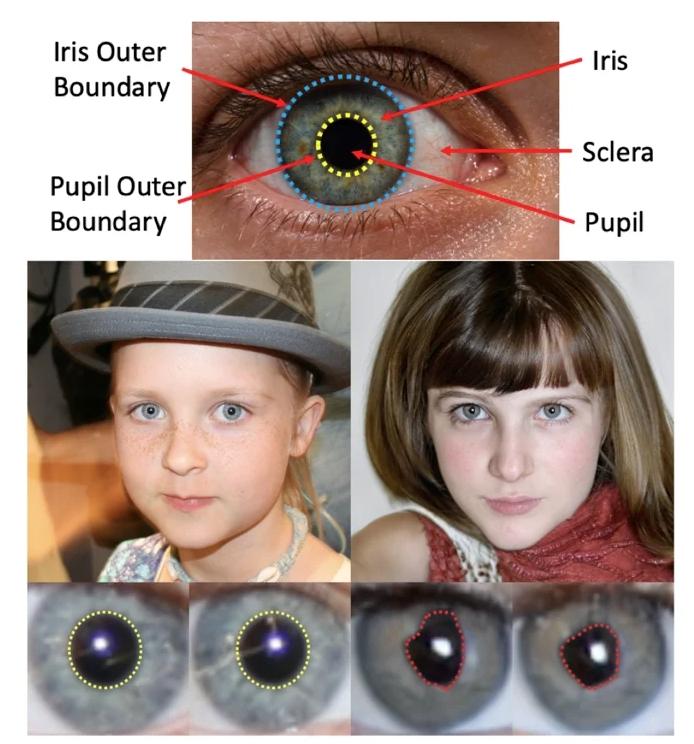 Comparación de las pupilas de una persona real y de una imagen de deepfake.